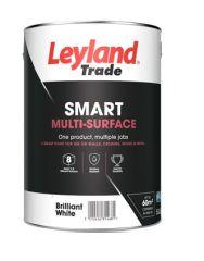Leyland Trade Smart Multi-Surface